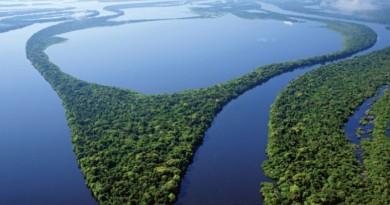 foto aérea da região amazônica