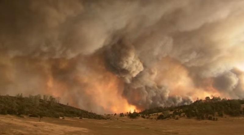 incêndio destruindo florestas na Califórnia