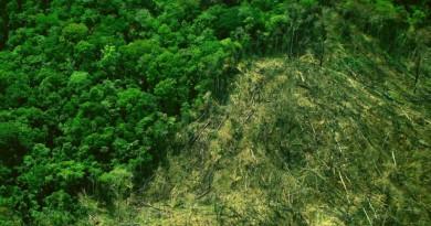 atlas de desmatamento da Mata Atlântica