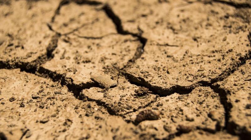 estudo mostra conexão entre crise hídrica e Amazônia