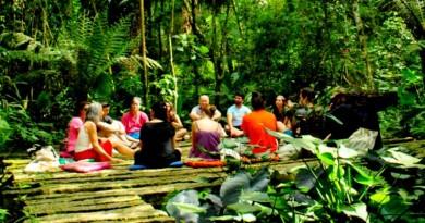 curso na escola schumacher brasil sobre economia para a transição