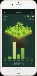 forest-arvores-800