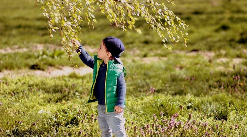 a-ultima-crianca-na-natureza-adinavoicu-pixabay-800