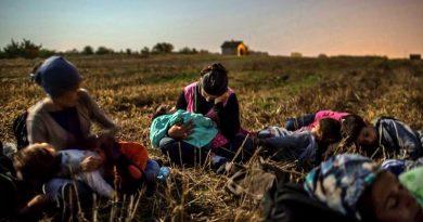 foto refugiados