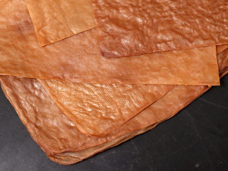 produto-couro-sintetico-cha-fermentado