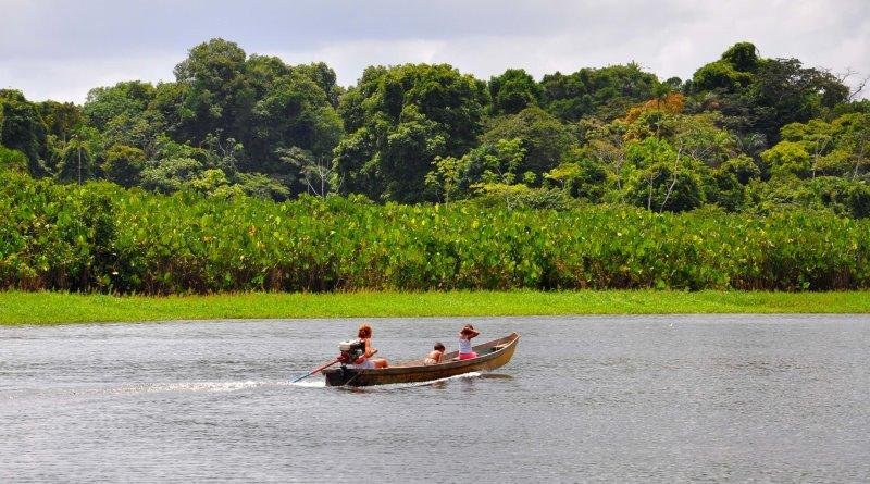 Pará ganha quatro novas unidades de conservação