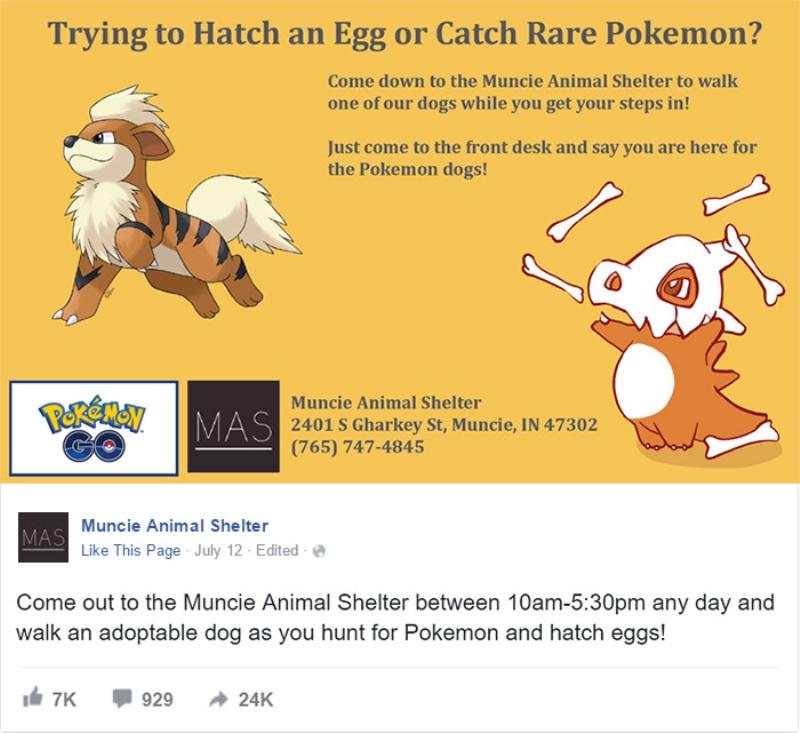 anuncio-pokemon-go-abrigo-animais
