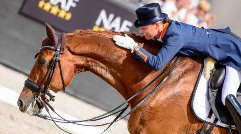 amazona holandesa acaricia cavalo