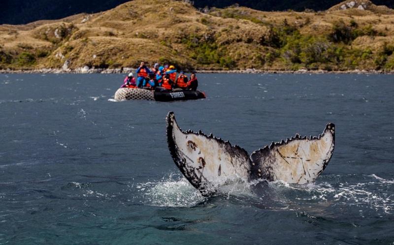 expedicao-fotografica-fiordes-da-patagonia-antonio-jimenez-2-800