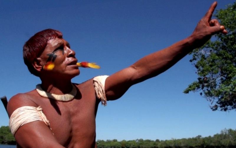 para-onde-foram-as-andorinhas-documentario-xingu