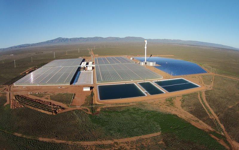 fazenda-deserto-produz-alimentos-luz-sol-agua-mar-4-conexao-planeta
