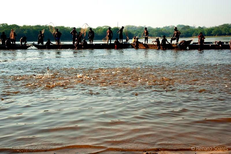 10-pyulaga-os-peixes-cercados-logo-vao-para-o-giral-foto-renato-soares