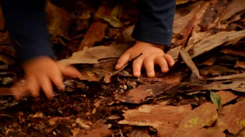 a-natureza-amplia-o-mundo-das-criancas-especiais-foto-renata-stort