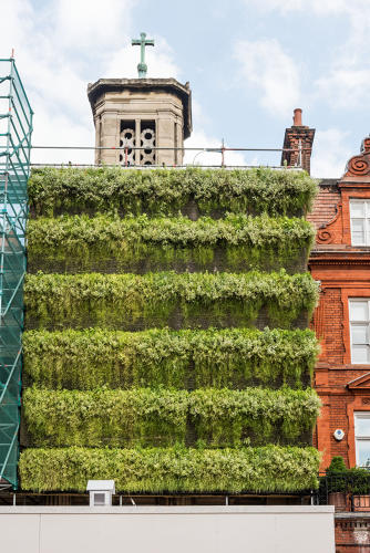 Arquitetos apostam em jardim vertical para reduzir barulho e poluição na construção civil