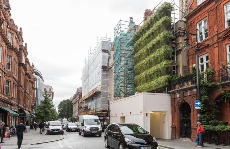 arquitetos-apostam-jardim-vertical-reduzir-barulho-poluicao-construcao-conexao-planeta