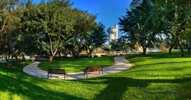 Instituto Weizmann de Ciências de Israel oferece bolsas para alunos brasileiros