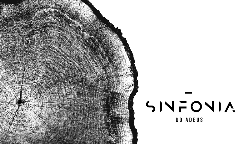 Campanha extrai música de pau-brasil para alertar sobre o desmatamento na Mata Atlântica