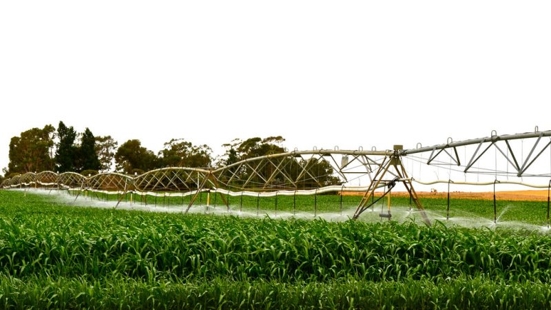 água de esgoto utilizada para irrigação