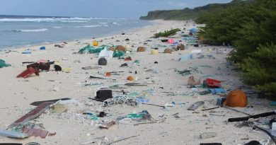 Milhões de toneladas de plástico são encontradas em um das ilhas mais remotas do planeta