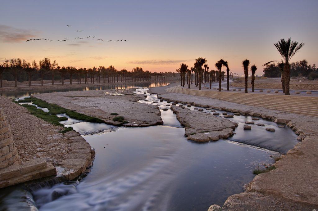 oásis no meio do deserto