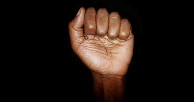 O direito dos humanos