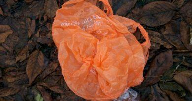 Quênia proíbe produção, venda e uso de sacolas plásticas