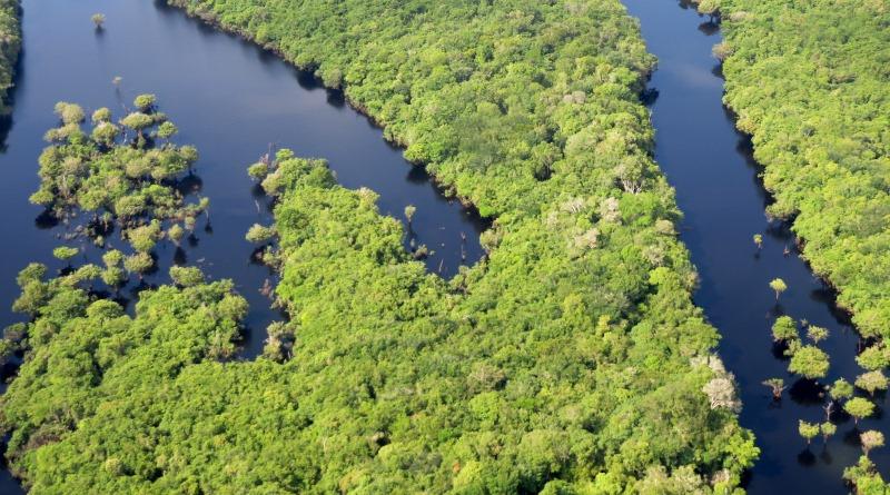 Protetores da Amazônia, nós pressionamos e conseguimos: a Renca é nossa!