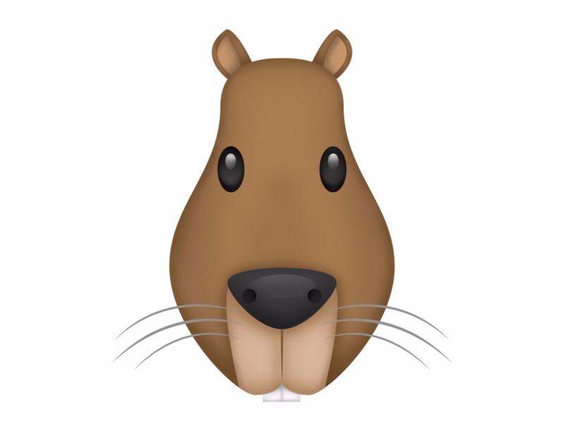 capivara pode ganhar um emoji graças à persistência de duas