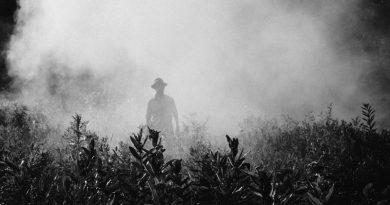 Americano com câncer é primeiro caso contra a Monsanto na Corte Federal dos Estados Unidos