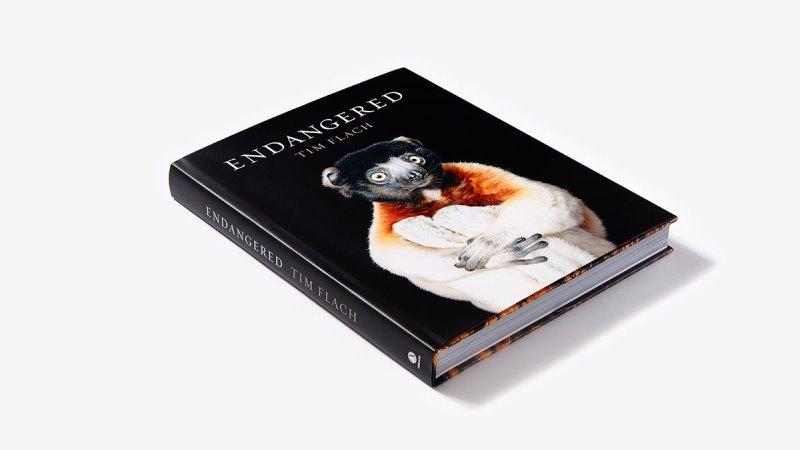 Livro traz fotos com feições impressionantes de animais ameaçados de extinção