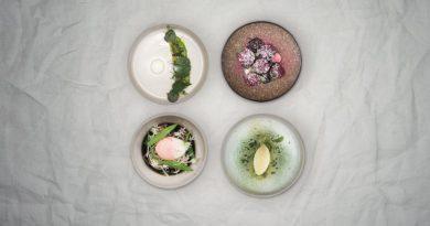 Tecido biodegradável pode virar adubo para a horta... e menu gourmet!