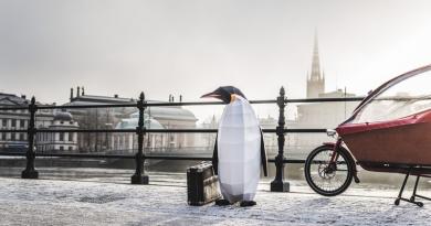 Pinguins invadem principais capitais do mundo em campanha pela proteção da Antártica
