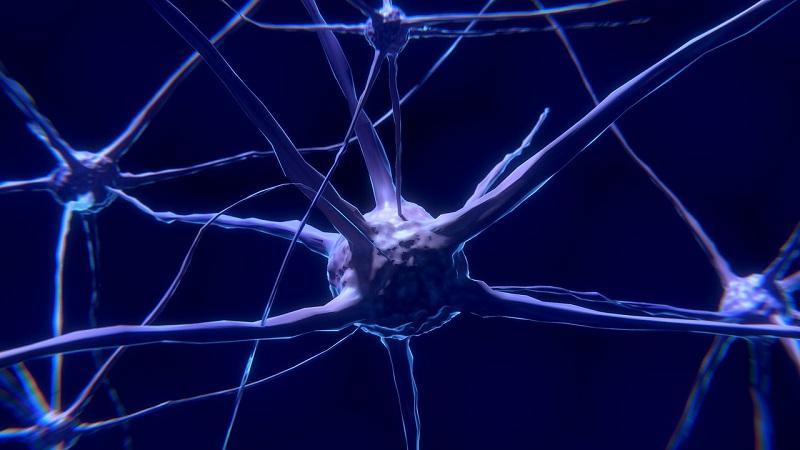 zika virus pode combater tumor cerebral