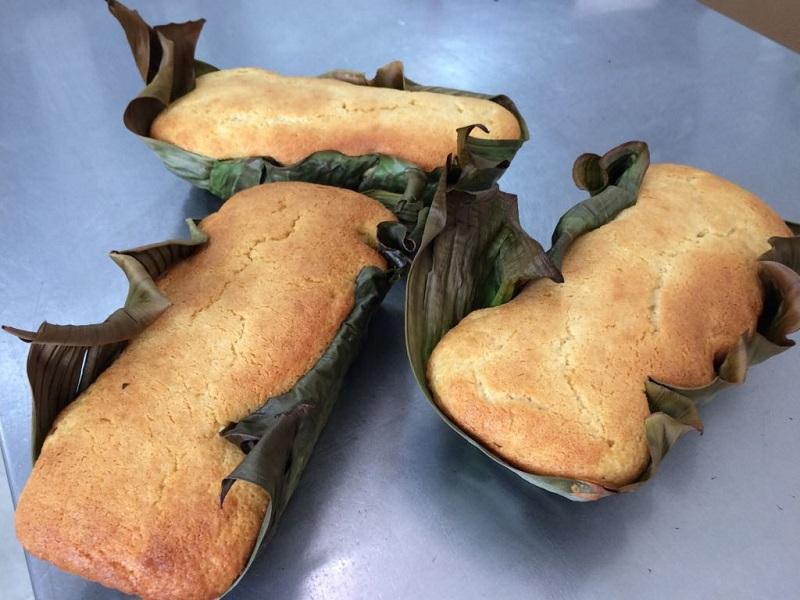 Folha de bananeira é alternativa natural e sustentável a embalagens e papel alumínio