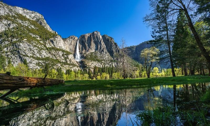 Americanos protestam contra abertura de Starbucks no Parque Nacional de Yosemite