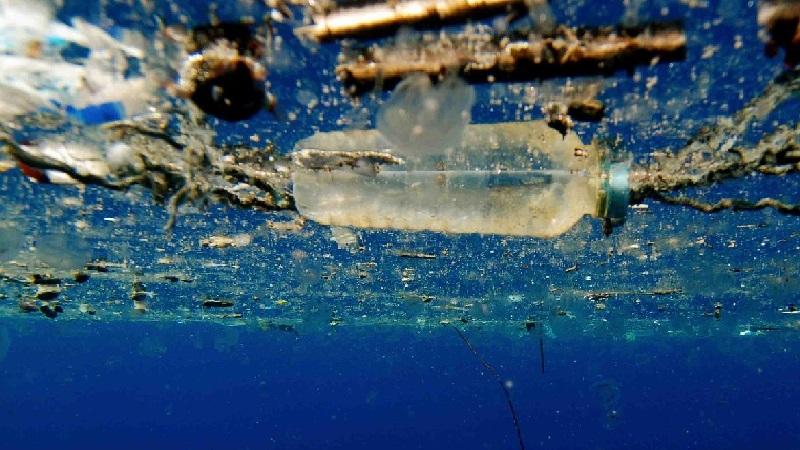 cientistas descobrem enzima que digere plástico