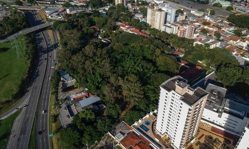Derrubada de 430 árvores para construção de estacionamento mobiliza moradores de São José dos Campos