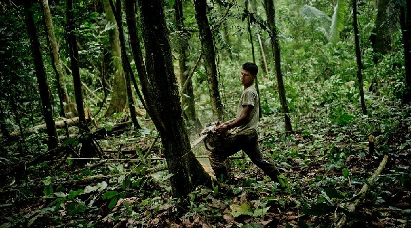 Cientistas brasileiros denunciam internacionalmente custo ao país das alianças entre Temer e bancada ruralista