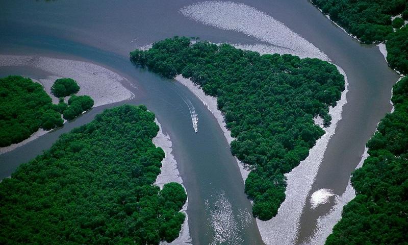 A preservação da natureza não é um gasto, mas um investimento no presente e no futuro do Brasil