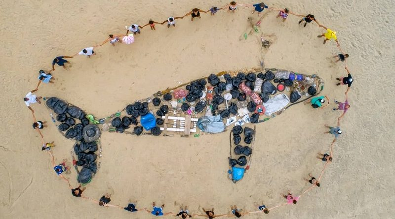 "Limpeza de praias no Espírito Santo recolhe uma ""baleia de lixo"""