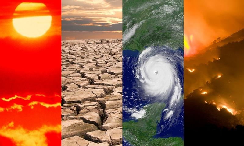 Planeta teve a década mais quente da história e 2019 foi o segundo ano com as mais altas temperaturas