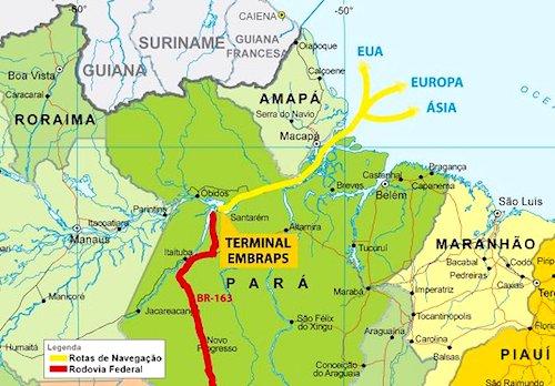 A Floresta Amazônica Vai Se Tornar Commodity Conexão Planeta