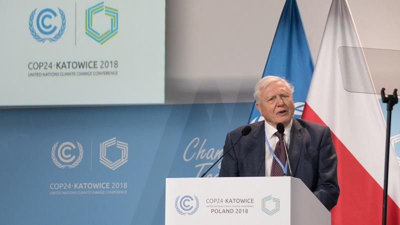 """""""Se não agirmos, o colapso de nossa civilização e a extinção de grande parte do mundo natural despontam no horizonte"""", alerta David Attenborough"""
