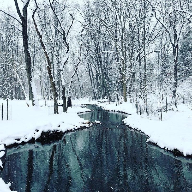 A neve que faz pulsar mais forte um coração tropical
