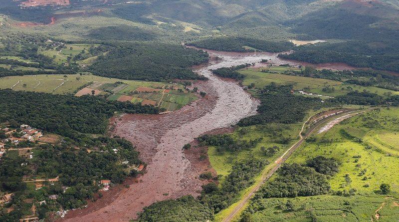 Quase 270 hectares de vegetação da Mata Atlântica foram destruídos com rompimento de barragem, em Brumadinho