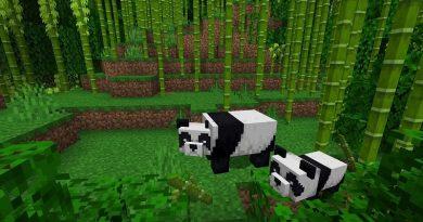 Urso panda chega ao Minecraft e, com ele, a chance de ajudar o WWF-Brasil