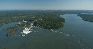 Bolsonaro anuncia apoio à reabertura da estrada que cortará ao meio o Parque Nacional do Iguaçu