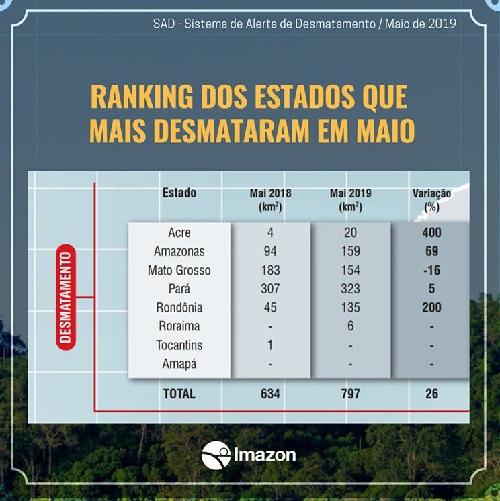 Amazônia tem quase 800 km2 de desmatamento em maio: aumento de 26% em relação a 2018