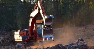 Brasil e Estados Unidos lideram retrocesso ambiental