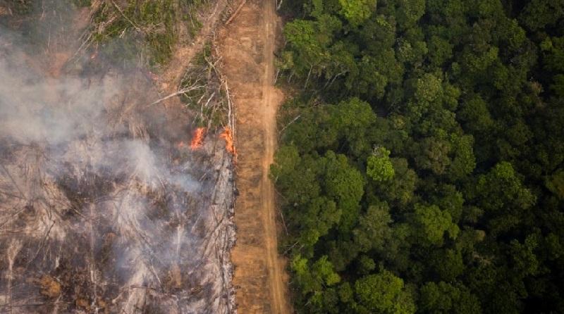 Desmatamento na Amazônia subiu 50% em 2019, indicam alertas do Inpe